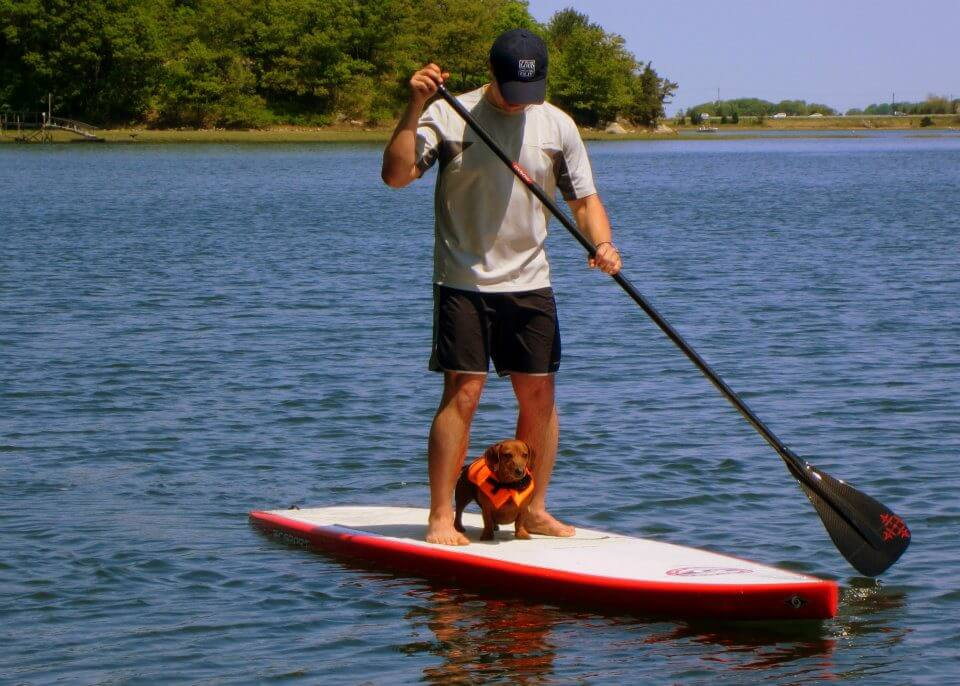 how to stand up paddleboard