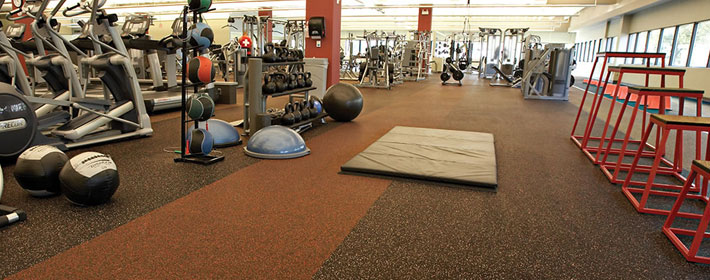 Inside of gym with rolled rubber flooring from Zogics.
