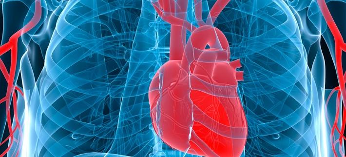 sudden-cardiac-arrest_3.jpg