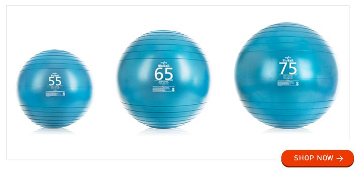Zogics BluBall Stability Balls